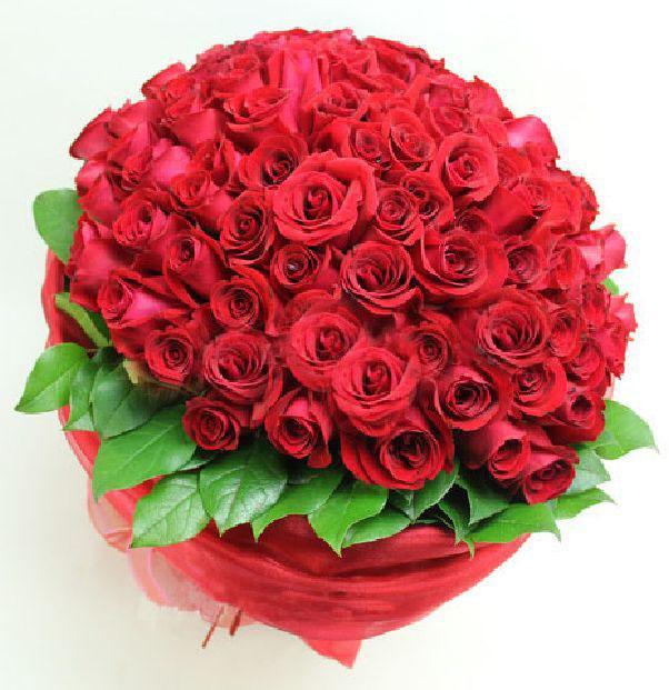 hoa lãng mạn